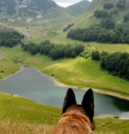 Orlovačko jezero, dragulj Zelengore