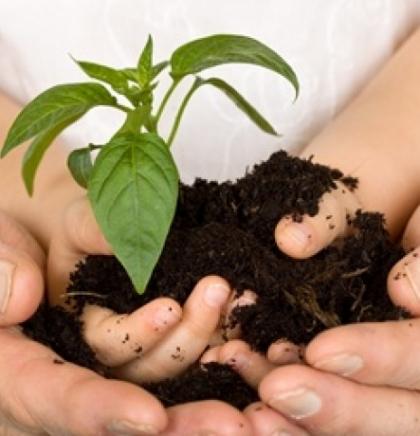 Ako odrasli poštuju prirodu i djeca će je poštovati