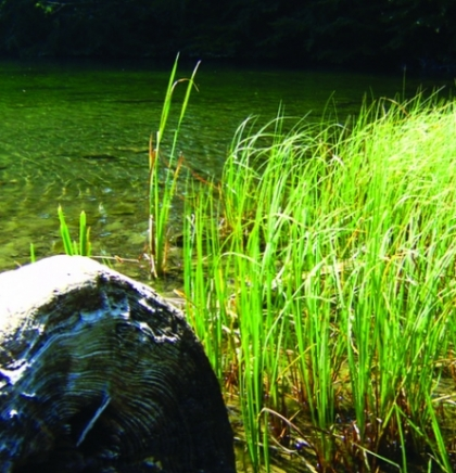Kukavičko jezero nadomak Kupresa: Ljepota koju su vile isplakale