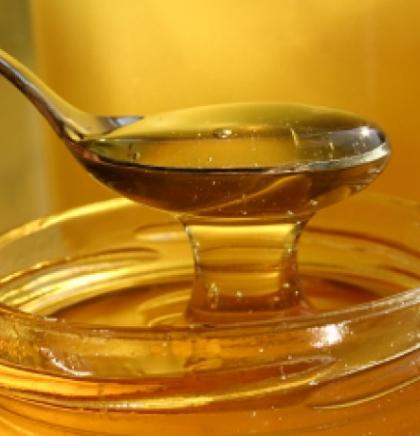 Japanci prepoznali kvalitet organskog meda iz BiH