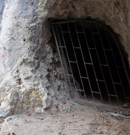 Kako otkriti tajnu pećinskog mlijeka