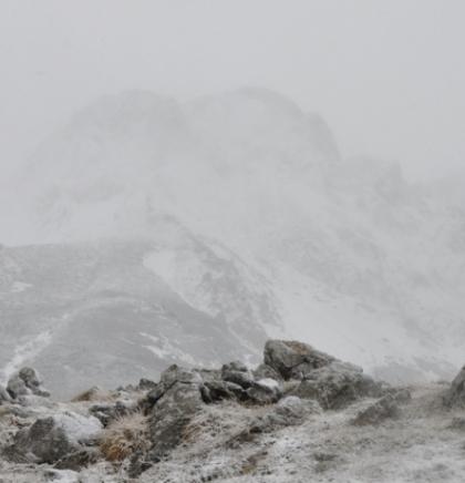 Vrh u magli