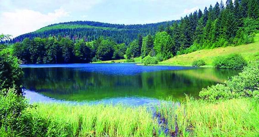 Slikovni rezultat za kukavičko jezero