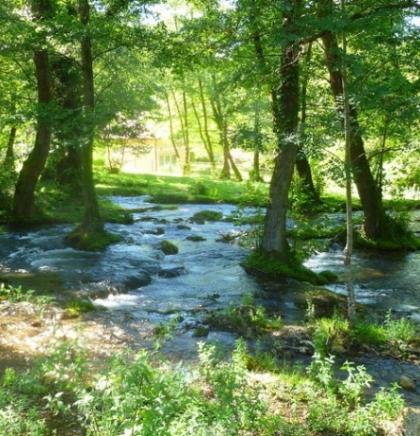 Rijeka Janj: Prirodni rezervat pun pastrmke i lipljena