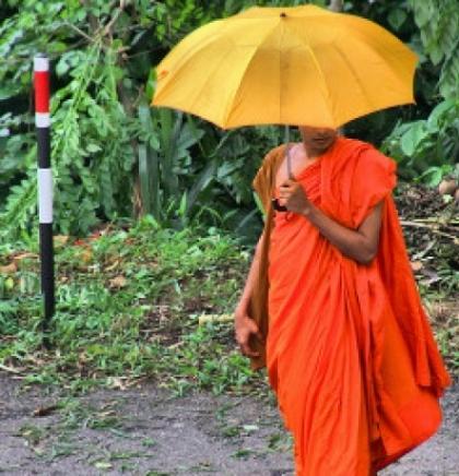 ŠRI LANKA: U kolijevci budizma