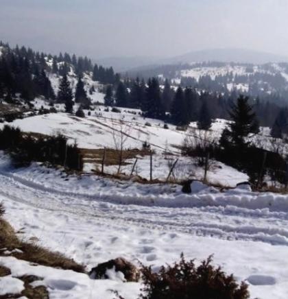 Nadomak Sarajeva omiljena planinarska ruta od Čavljaka prema Bukoviku