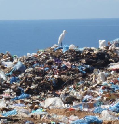 Nova vrsta zagađenja u okeanima