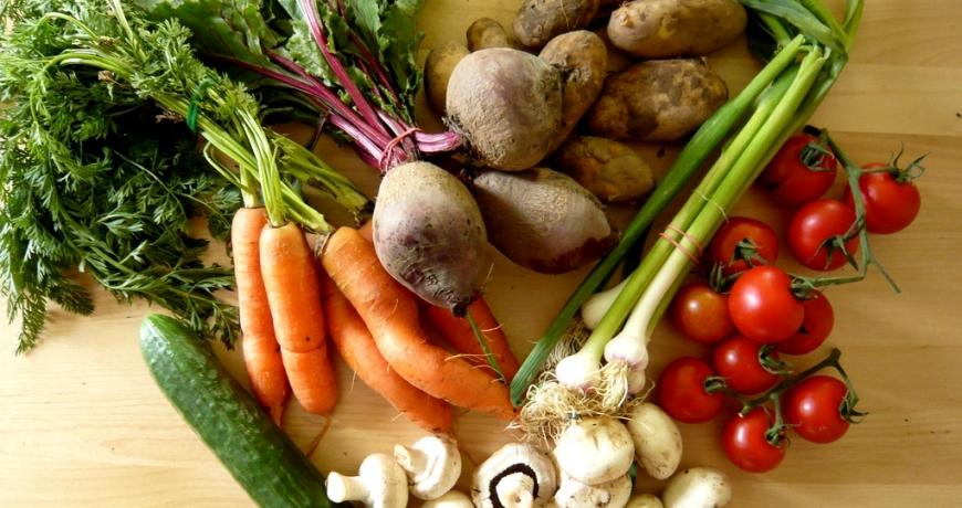 Centar: GMO monokulture posebna opasnost za raznovrsnost genetičkih resursa