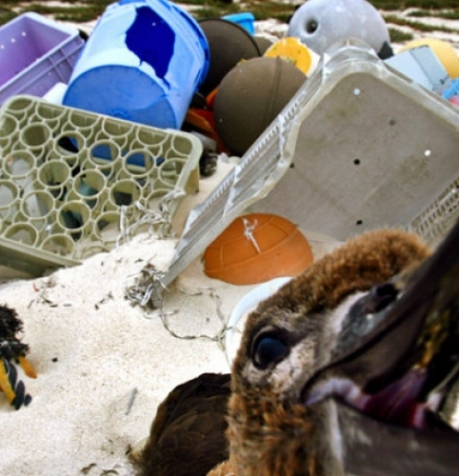 The Ocean Is Filling Up With 'Plastic Smog'