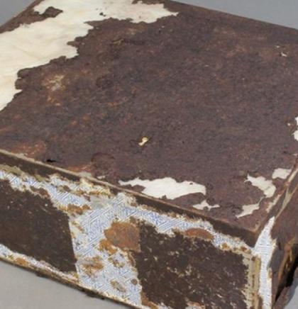 Na Antarktici pronašli savršeno očuvan 106 godina star voćni kolač