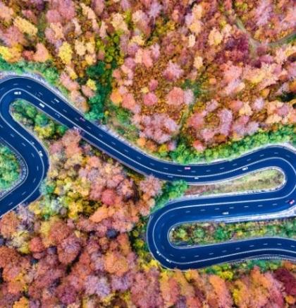 FOTOGALERIJA: Jesen iz ptičije perspektive