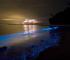 FOTOGALERIJA: Zvjezdano more, Maldivi