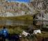 Beautiful Zelengora: Lovely colors of autumn on Kladopoljsko lake