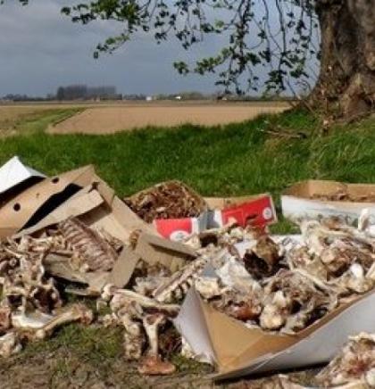Selmanagić: Postupanje s otpadom životinjskog porijekla nije propisno