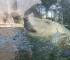 Praški zoološki vrt: nezaobilazna destinacija za sve ljubitelje životinja