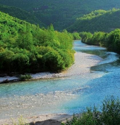 Rijeke Balkana posljednje stanište ugroženih riba