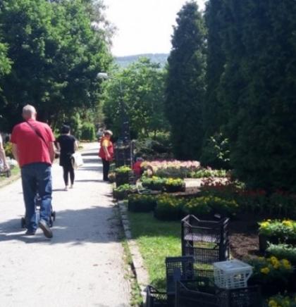 Tokom ljetnog perioda povećana posjeta Pionirskoj dolini