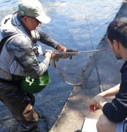Osamnaesti međunarodni kup ribolovaca u Kulen Vakufu