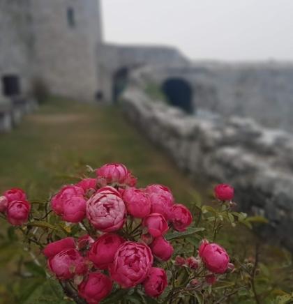 Tešanj- Grad bogate i zanimljive historije
