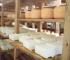Smajić: Tešanjski zlatni sir sazrijeva 15 mjeseci, kupci znaju da vrijedi čekati