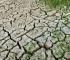 RCC - Jača regionalna saradnja u provedbi ekoloških i klimatskih prioriteta