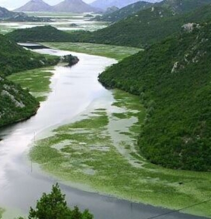 Ekolozi upozoravaju na vrijednost rijeka Balkana