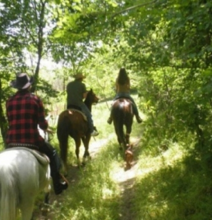 BiH and Vojvodina in a joint project 'Horse riding trails through the Balkans'