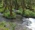 Ekolozi: Na sceni legalizacija male hidroelektrane Šipovo