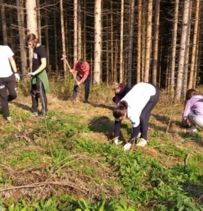 Adekvatnu zaštitu okoliša otežavaju podijeljene nadležnosti u BiH