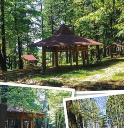 """Na proljeće u Starom Gradu otvaranje parka """"Gradska šuma"""""""