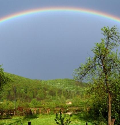 Banja Luka priprema popis biljnih i životinjskih vrsta