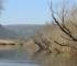 Ekolozi pozivaju da se zaštiti područje bare Tišina