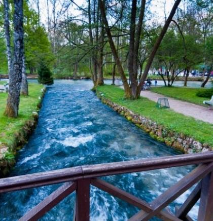 Na Vrelu Bosne obilježen Svjetski dan zaštite šuma