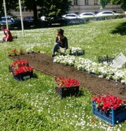 'Park' sezonskim cvijećem uređuje zelene površine u centru Sarajeva