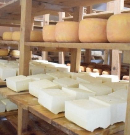 Smajić: 'Golden' cheese from Tešanj needs 15 months to ripen, but our customers know it's worth to wait!