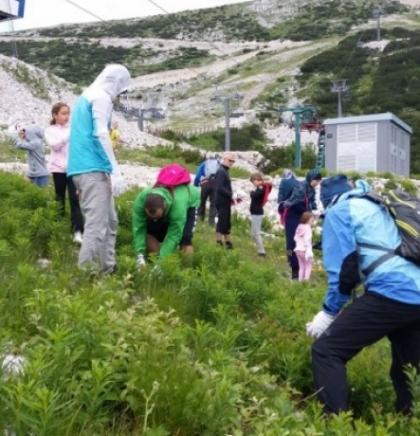 Volonteri uklanjali kamenje sa ski staze na Bjelašnici