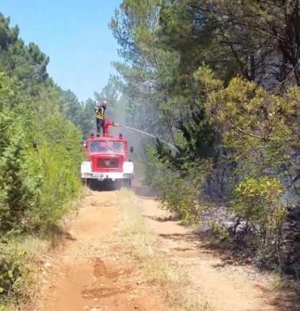 Kod vodopada Kravica opožareno 50 tisuća četvornih metara
