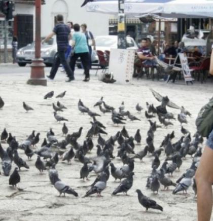 U maju u BiH više od 150 hiljada turista, najviše noćenja gostiju iz Srbije