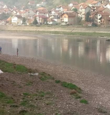 Goražde: Rijeka Drina bogatija za više od 5.000 komada pastrmke