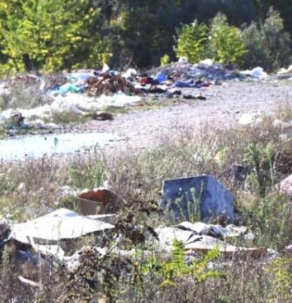 Federacija BiH planira uvesti potpunu zabranu upotrebe plastičnih vrećica