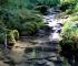 Vrelo Miljacke: Čarobno mjesto gdje je rijeka pitka (VIDEO)