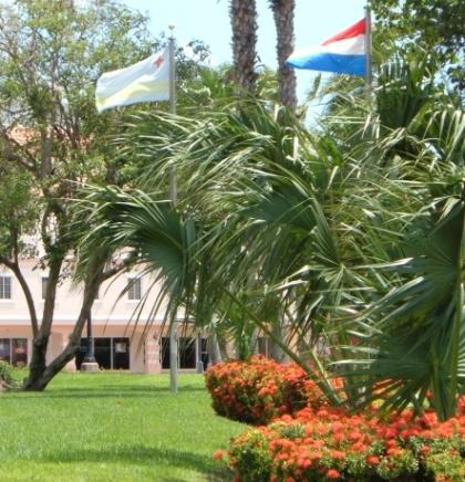 Od Miljacke do mora i okeana: ARUBA,treći dio Holandije