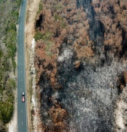 U Australiji u požarima uništeno 1,1 milion hektara zemljišta