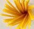 Barovi u Italiji počinju koristiti pasta slamke kako bi smanjili količine plastičnog otpada