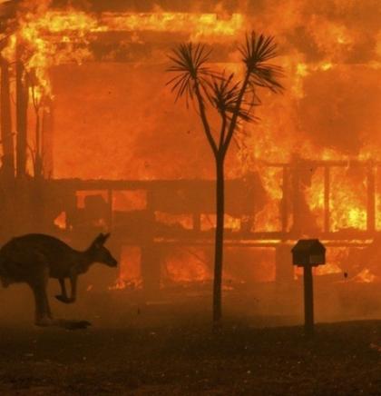 Požari u Australiji: 'Mega' požar vjerovatno u petak navečer