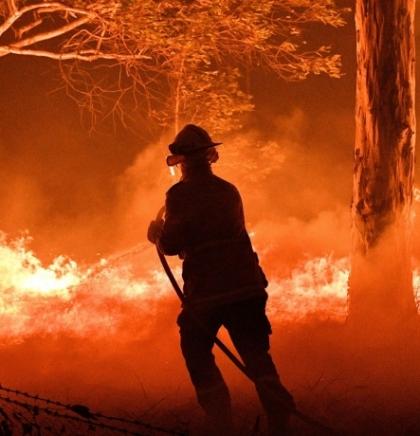 Kako možete pomoći u suzbijanju požara u Australiji