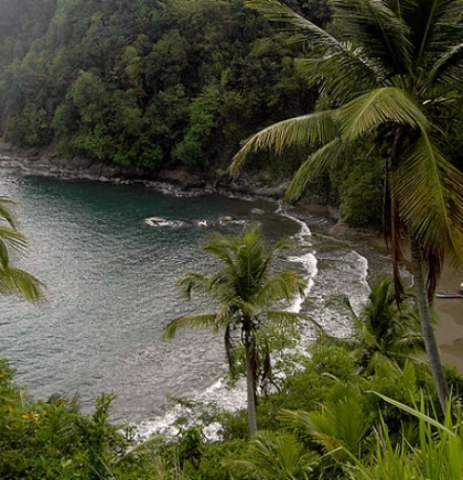 OD MILJACKE DO MORA I OKEANA: Dominika, država i ostrvo i džungla