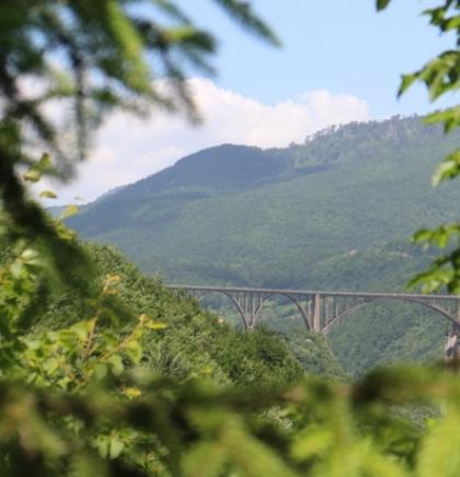Tara smaragdno plava granica između Bosne i Crne Gore