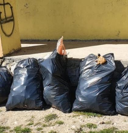 Ekološki aktivisti planiraju očistiti svih 59 naseljenih mjesta u Tomislavgradu