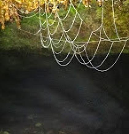Tajne Tamnice, Toplice, Ledenjače- pećina u okolini Miljevine